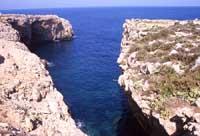 Riserva Naturale Capo Rama - Cala Porro  - Terrasini (11236 clic)