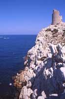 Riserva Naturale Capo Rama la falesia e la torre saracena  - Terrasini (5698 clic)