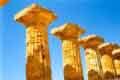 colonne doriche di uno dei lati lunghi del tempio E sulla collina orientale (altro luogo sacro dei Selinuntini) - TEMPIO DI ERA   - Selinunte (7630 clic)
