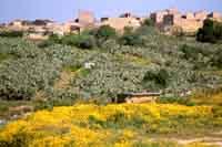 Panorama del Vecchio Centro Abitato - Presisma - Santa Margherita di Belice - Contrada  San Liborio    - Santa margherita di belice (4306 clic)