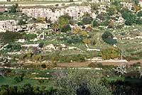 Cava d'Ispica  - Cava d'ispica (3259 clic)