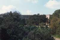 Castello di Donnafugata - giardini  - Donnafugata (4126 clic)