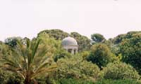 Castello di Donnafugata - giardini  - Donnafugata (7566 clic)