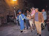 Cavalvata di San Giuseppe  - Scicli (5223 clic)