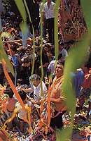 Festa di San Bartolomeo  - Giarratana (5255 clic)