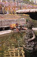 Festa di San Giovanni  - Ragusa (7948 clic)