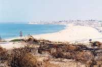 Spiaggia  - Camarina (13810 clic)