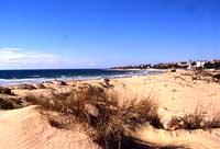 Marina di Modica - dune  - Marina di modica (9338 clic)