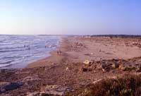 Punta Braccetto  - Punta braccetto (4819 clic)