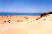 Spiaggia di Sampieri - dune  - Sampieri (27347 clic)