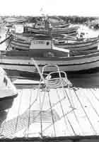 Barche al porto  - Punta secca (2590 clic)