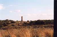 Scavi dell'Eloro: colonna Pizzuta  - Eloro (5040 clic)