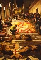 Primavera Barocca: l'infiorata di Noto  - Noto (8925 clic)