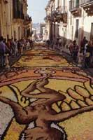Primavera Barocca: l'infiorata di Noto  - Noto (8605 clic)