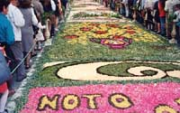 Primavera Barocca: L'Infiorata  - Noto (9542 clic)