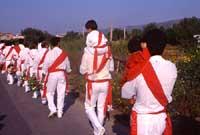 Festa di San Sebastiano - Corsa detta dei Nuri.  - Avola (6663 clic)