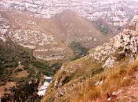 Cava Grande - laghetti di Avola  - Cava grande del cassibile (7368 clic)