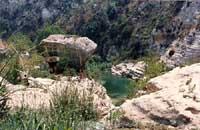 Cava Grande - laghetti di Avola  - Cava grande del cassibile (8464 clic)