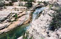 Cava Grande - laghetti di Avola  - Cava grande del cassibile (11137 clic)