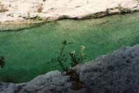 Cava Grande - laghetti di Avola  - Cava grande del cassibile (8533 clic)