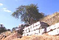 mura con iscrizioni greche della vecchia leontinoi  - Leontinoi (3101 clic)