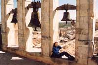 Le campane di San Carlo al corso  - Noto (4479 clic)
