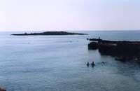 La costa di Ognina - Siracusa  - Siracusa (3741 clic)