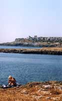 La costa di Ognina - Siracusa  - Siracusa (3436 clic)