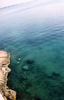 mare di Ortigia  - Siracusa (3705 clic)