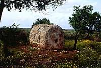 Cave di Cusa  - Cave di cusa (4006 clic)
