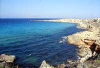 Isole Egadi - La costa di Favignana  - Favignana (2397 clic)