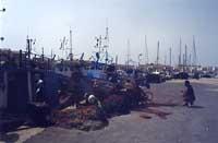 il porto peschereccio  - Favignana (2387 clic)