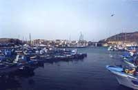 Il porto e vista del paese  - Favignana (2496 clic)