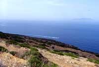 Isole Egadi - La costa di Levanzo  - Levanzo (2598 clic)