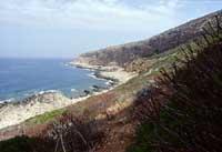 Isole Egadi - La costa di Levanzo  - Levanzo (2749 clic)