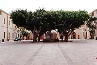 Interno dell' ex Quartiere Spagnolo, attuale sede del Comune di Marsala  - Marsala (4102 clic)