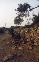 Isola di Mozia - Cinta Muraria  - Mozia (3288 clic)