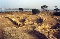 Isola di Mozia  - Mozia (7754 clic)