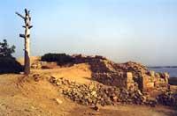 Isola di Mozia  - Mozia (3162 clic)