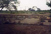Isola di Mozia  - Mozia (2985 clic)