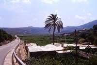 Pianura di Ghirlanda  - Pantelleria (2238 clic)