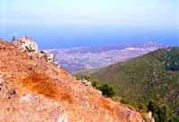 -  - Pantelleria (2240 clic)