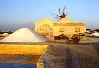 Saline di Trapani e Marsala: Mulino a vento principale antico  - Trapani (9010 clic)