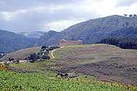 Tempio di Segesta  - Segesta (1535 clic)