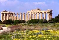 Selinunte - Tempio E  - Selinunte (2250 clic)