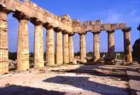 Tempio di Selinunte  - Selinunte (1671 clic)