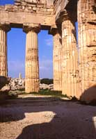 Tempio di Selinunte  - Selinunte (1895 clic)
