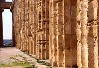 Tempio di Selinunte  - Selinunte (2003 clic)