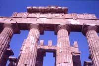 Tempio di Selinunte  - Selinunte (1948 clic)