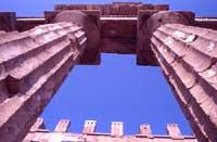 Tempio di Selinunte  - Selinunte (1486 clic)
